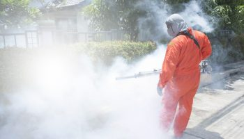 Important Considerations For Outdoor Pest Control